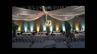 Black Bear in mint green and yellow wedding lighting by Duluth Event Lighting
