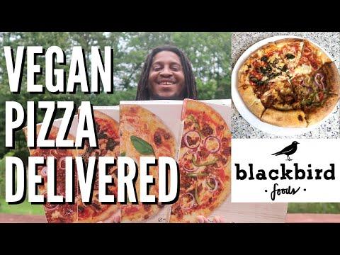 new-frozen-vegan-pizza-taste-test-&-review!-|-does-blackbird-foods-make-the-best-plant-based-pizza?