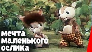 Мечта маленького ослика (1984) мультфильм