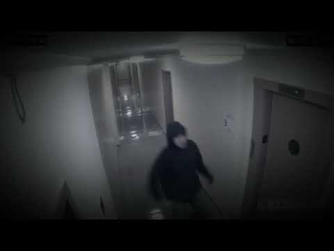 Top 5 Scarry Video Caught On Camera|RaNdOm ViDeOs