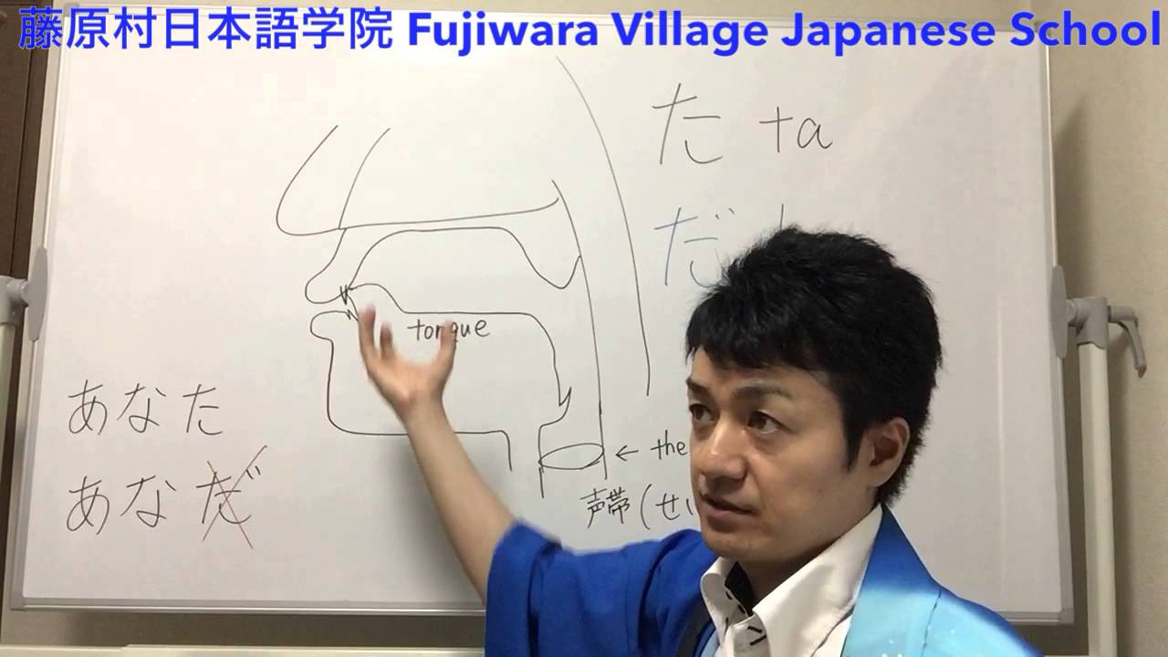 Japanese pronunciation た & だ explanation how to distinguish in Japanese, English, 發音,發音,発音 - YouTube