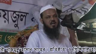 আল্লামা মুফতি সৈয়দ মুুহা. ফয়জুুল করিম (পিরে কামেল চরমোনাই)