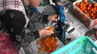 干し柿を作ってみたのだ♪~野田村 日形井地区~