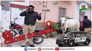 | Chori ka bail Prank | By Nadir Ali In | P4 Pakao | 2019