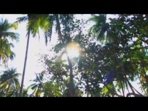 Discover Baracoa, Cuba