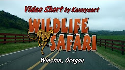 Wildlife Safari, drive through wild game park, Winston, Oregon