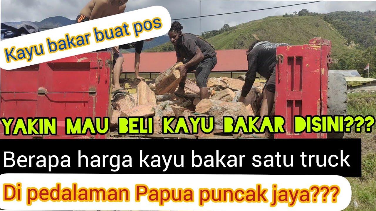 Download BELI KAYU BAKAR DI DAERAH ZONA RAWAN OPM !!! HARGA KAYU BAKAR DI TINGGI NAMBUT PAPUA???