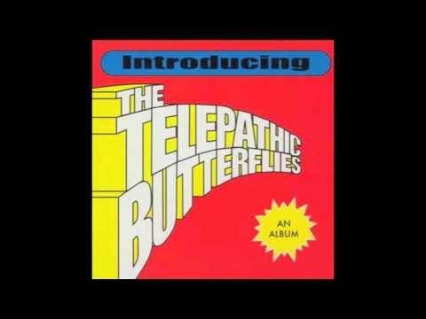 The Telepathic Butterflies - Nothing But The Sunshine
