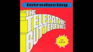 Watch Telepathic Butterflies Nothing But The Sunshine video