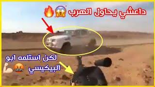 البيكيسي🤬💪🏻| نصب كمين لااحد الدواعش الهاربين من قبل عشائر الجغايفة مشهد حي من ارض صحراء صلاح الدين