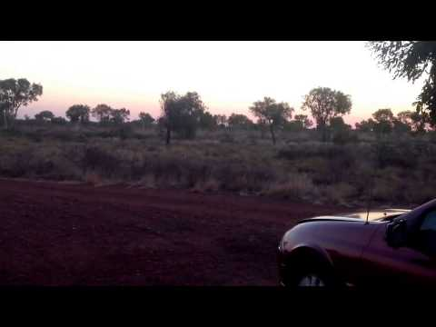Free Camp in the outback