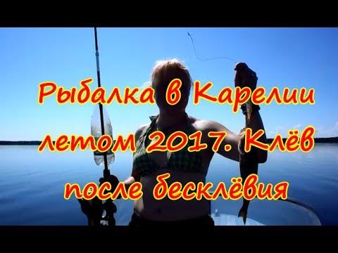 Рыбалка в Карелии летом 2017. Клёв после бесклёвия - YouTube
