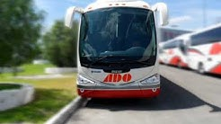 Local Buses Must Pay for Vehicle Insurance in Mexico