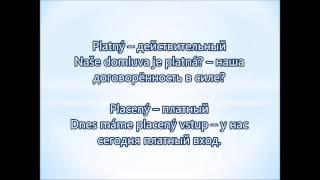 Чешский язык. Видеокурс. Расширение словарного запаса. Лекция 2, ч.2. Слова с разным значением
