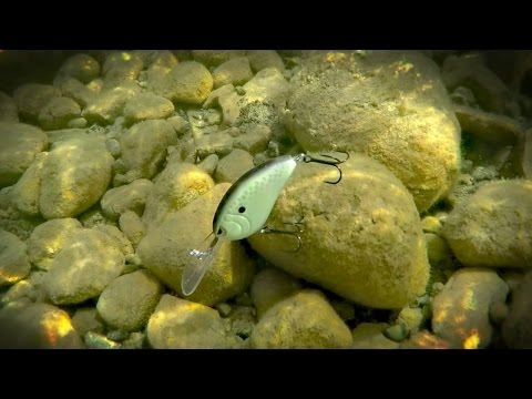 Fishing With Deep Diving Crankbaits
