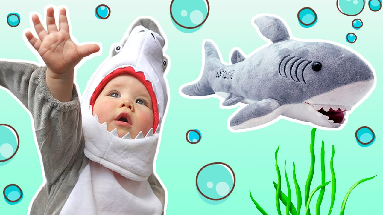 Baby Shark song and dance - YouTube