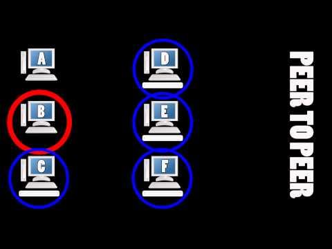 Come funzionano le reti Peer to Peer