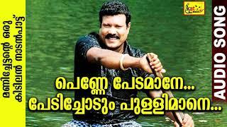 പെണ്ണേ പേടമാനേ പേടിച്ചോടും പുള്ളിമാനേ | Kalabhavan Mani Super Hit Song | Audio Song