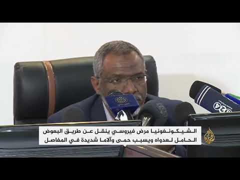مرض فيروسي يجتاح ولاية كسلا السودانية ويصيب الآلاف  - نشر قبل 37 دقيقة
