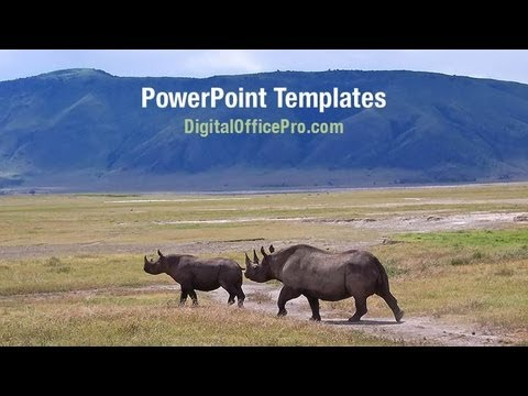 rhinoceros powerpoint template backgrounds digitalofficepro
