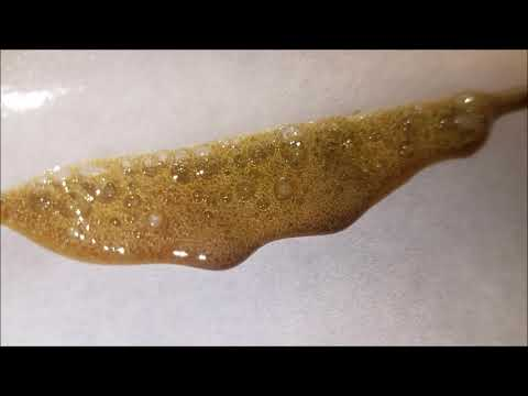 Rosin press Skunk-47 19.20% yield