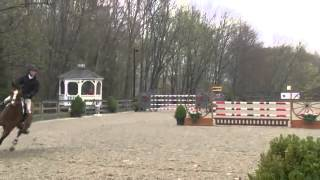 Video Of Limoncello Ii Ridden By Sophie Michaels From Shownet!