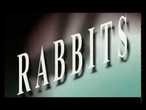 "David Lynch's ""Rabbit..."