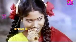 டேய் பரதேசி நாயே வீட்டுல திங்க சோறு இருக்க டா அப்புறம் என்ன டா Cricket Score! Goundamani Senthil