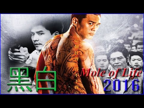 电影 动作电影 《黑白》Mole Of Life 2016