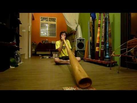 Terré Didgeridoo ProLine sliced 180/Dakung/迪吉里度/大恭