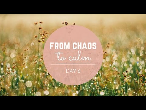 From Chaos to Calm: Day 6