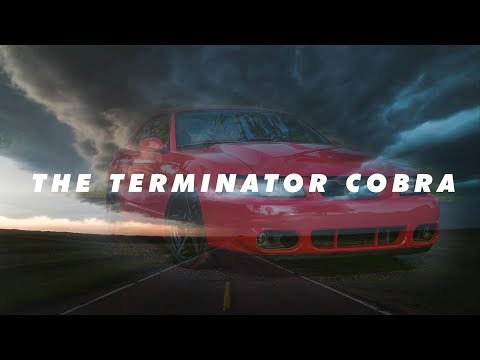 homepage tile video photo for The Terminator Cobra