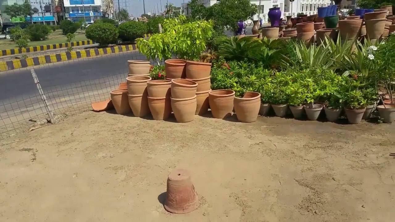 6 - Visit To Plant Nursery Sept. 2016 (URDU/HINDI) - YouTube
