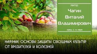 Научные основы защиты овощных культур от вредителей и болезней