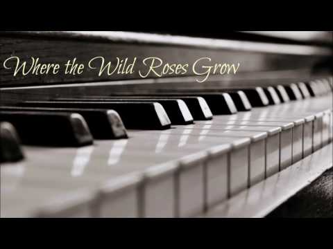 Where the Wild Roses Grow (Piano Instrumental Cover)