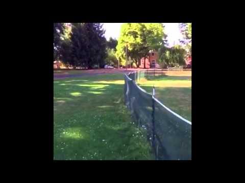 Dog runs into a fence and does a flip | ORIGINAL