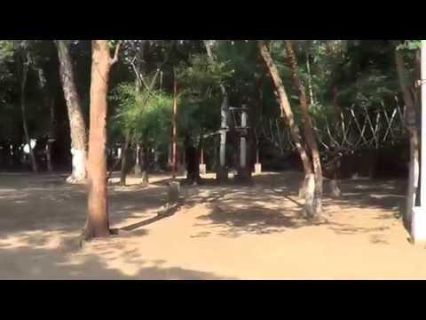 Tree Houses on Bhavani Island-Vijayawada 17.10.2016