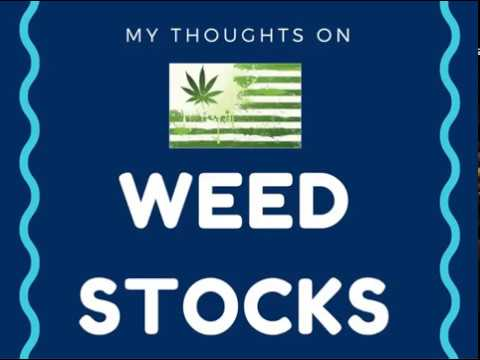 Weed Stocks 2016 - Should You Invest? My Thoughts