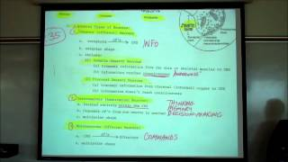 Organization of the Nervous System; the CNS & PNS by Professor Fink