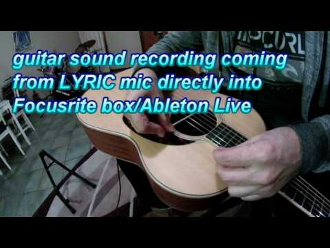 LR Baggs Lyric Presence Control
