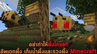 อย่าทำให้ผึ้งโกรธ อัพเดทผึ้ง เก็บน้ำผึ้งและรวงผึ้ง Minecraft
