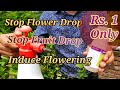 How to Stop fruit drop , flower drop , bud drop in just 1 Rupee