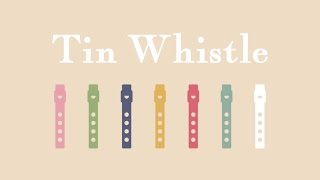 Introduction of Tin Whistles