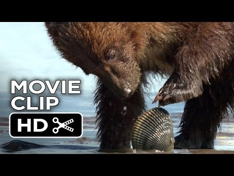 Bears Movie CLIP - Digging Up Clams (2014) - Disneynature Documentary HD