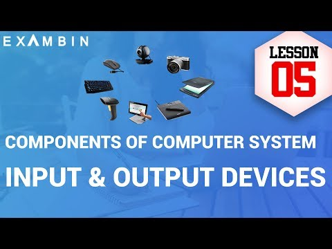 Components of Computer System – Input output devices of computers | Computer awareness - Lesson 5