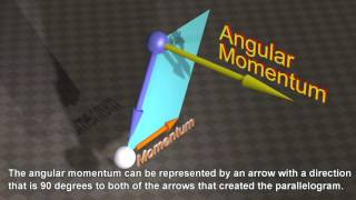 Momentum and Angular Momentum of the Universe