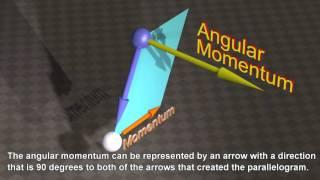 Momentum and Angular Momentum of the Universe