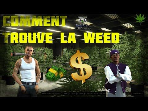 GtaV Rp Comment trouvé la Weed !