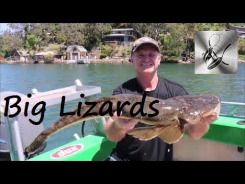 Fishing For Big Flathead | Fishing & Cooking