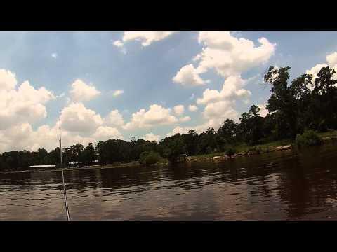 Lake houston jug fishin doovi for Lake houston fishing